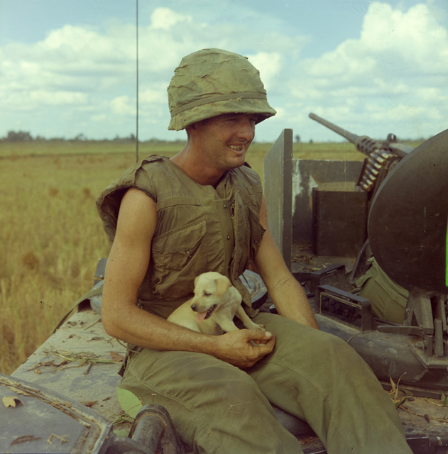 Photograph of Specialist 4th Class Jackie Coulter Holding a Dog that had Survived an Airstrike in a Village Near Laikhe