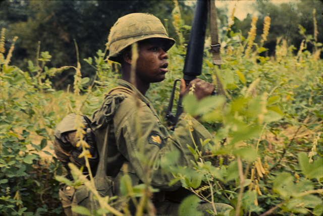 Photograph of Specialist 4th Class McClanton Miller Kneeling in Dense Brush Waiting for Orders to Move Forward