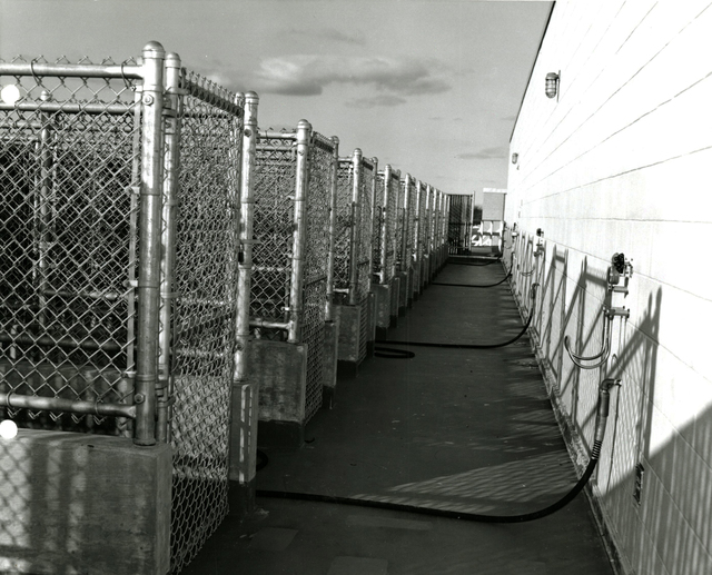 Environmental Lab - Roof of Animal Hold Area