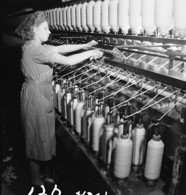 [Cotton and the French Textile Industry]