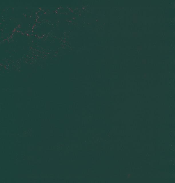 AS06-02-1080 - Apollo 6 - Apollo 6 Mission Image - During night pass