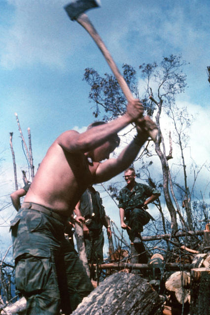 A member of the 3rd Marine Division uses an axe to clear underbrush and trees from a mountain-top fire support base construction site