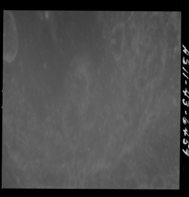 AS11-43-6459 - Apollo 11 - Apollo 11 Mission image - Moon, Crater Neper, Crater Neper G and Neper Q