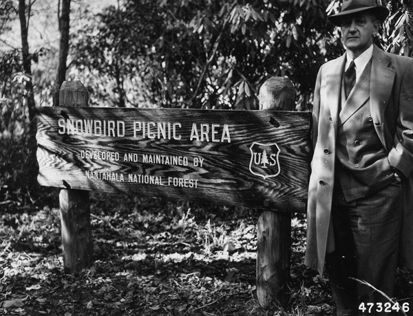 Photograph of a Rustic Sign Designating a Picnic Area