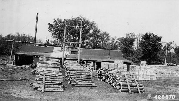 Photograph of Forest Service Rough Products