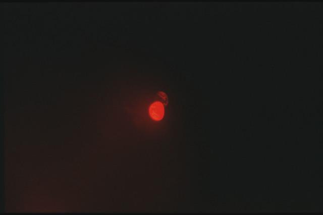 AS17-162-24072 - Apollo 17 - Apollo 17, Earth sphere