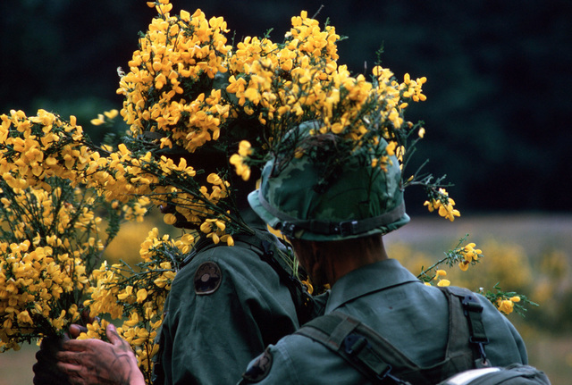 Infantryman camouflage themselves during a combat training exercise