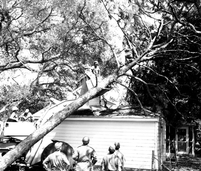 U. S. Air Force personnel, from the 823rd Civil Engineering Squadron (CES) assigned to Tactical Air Command (TAC) 9th Air Force, use heavy equipment to clear fallen trees near a small building during post-Hurricane Elloise cleanup operations. The 823rd CES is a Rapid Engineering Deployable Heavy Operations Squadron, Engineer (Red Horse)