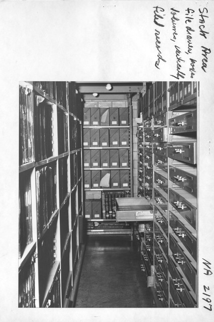 Photograph of Stack Area: File Drawer, Boxes, Volumes, and Vertically Filed Records