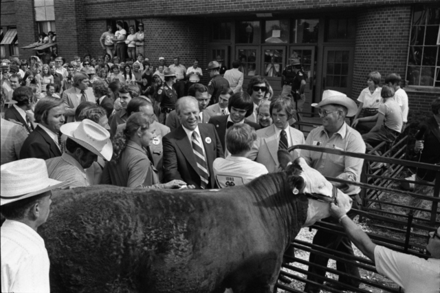 President Gerald R. Ford, Governor Robert Ray, 4-H Club Members, and Livestock Growers Looking at Cattle at the Iowa State Fair in Des Moines, Iowa