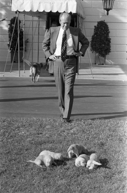President Gerald R. Ford Watches His Dog Liberty's Puppies Playing on the South Lawn of the White House