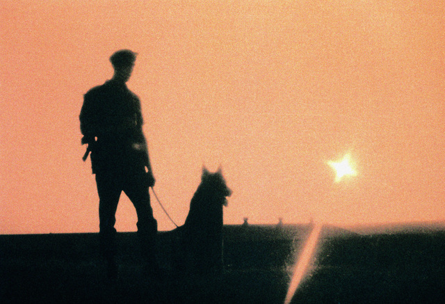 SRA Kevin Day, winner of the Outstanding AIRMAN of the Year award, and his K-9 partner, Briggs, watch the sun set while on sentry duty in the weapons storage area