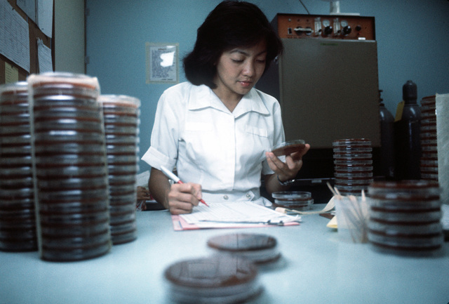 Adeluisa Cokee, a laboratory technician, measures antibiotic sensitivity during lab tests at Clark USAF Hospital