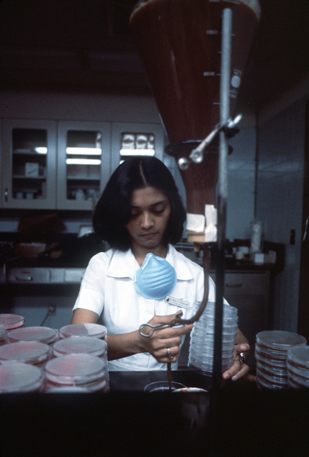 Vollette Villapando, a laboratory technician, dispenses media on plates for venereal disease cultures during lab tests at Clark USAF Hospital