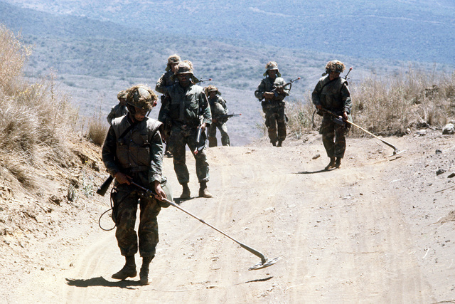 Two Marines followed by infantrymen, sweep the road with mine detectors (ANTRS-153). The Marines using the detectors, are members of the Combat Engineers Battalion. They are going through combat readiness evaluation at the Pakalula Training Area
