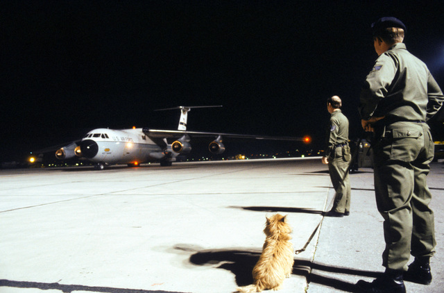 A left front view of a C-141 Starlifter aircraft arriving with evacuees from the US Embassy in Tehran. Waiting in the foreground is a dog handler with a Cairn Terrier at his side to check the plane for drugs that may have been smuggled out of Iran