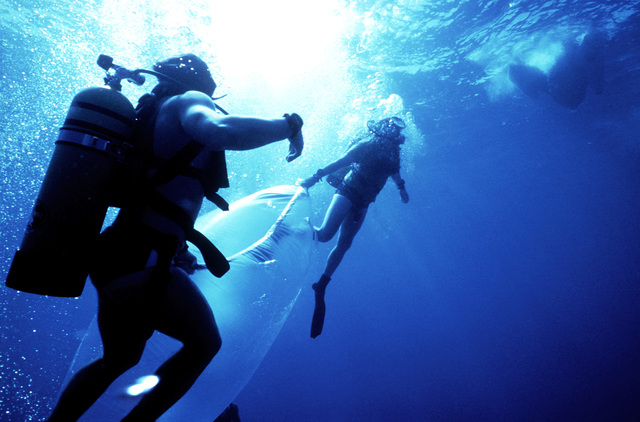 Navy divers from the Atlantic Fleet Audiovisual Command collect a water sample for scientific purposes