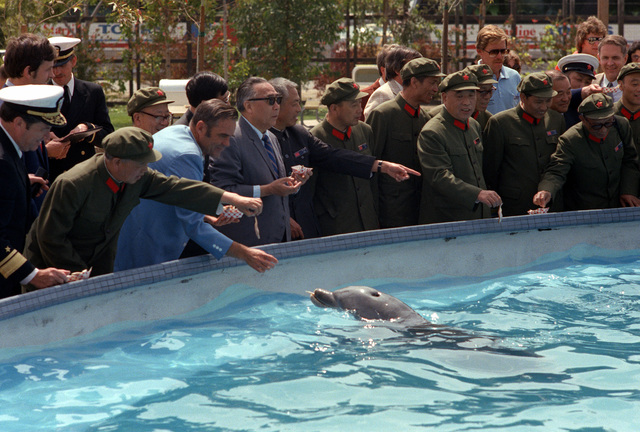 Chai Zemien, center, Chinese ambassador to the United States, and delegates from the People's Republic of China feed a dolphin during their tour of Sea World