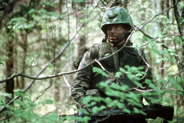A close view of a combat-ready Marine officer candidate with camouflage paint on his face as he stops and looks through the bushes and tree branches. He is a student of The Basic School for Marine Officers Combat Training