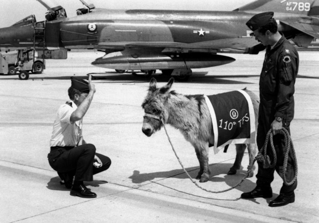 Air Force COL. John R. Layman, commanding officer, 131st Tactical Fighter Wing, swears in Banjo A. Burro II. Banjo is the new mascot for the 110th Tactical Fighter Squadron. LT. COL. Fred Moore (holding rope), is the commanding officer of the squadron
