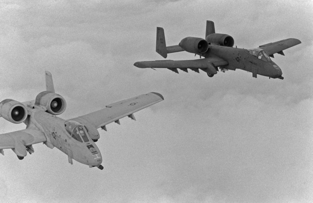 An air-to-air right front view of two 81st Tactical Fighter Wing A-10 Thunderbolt II aircraft