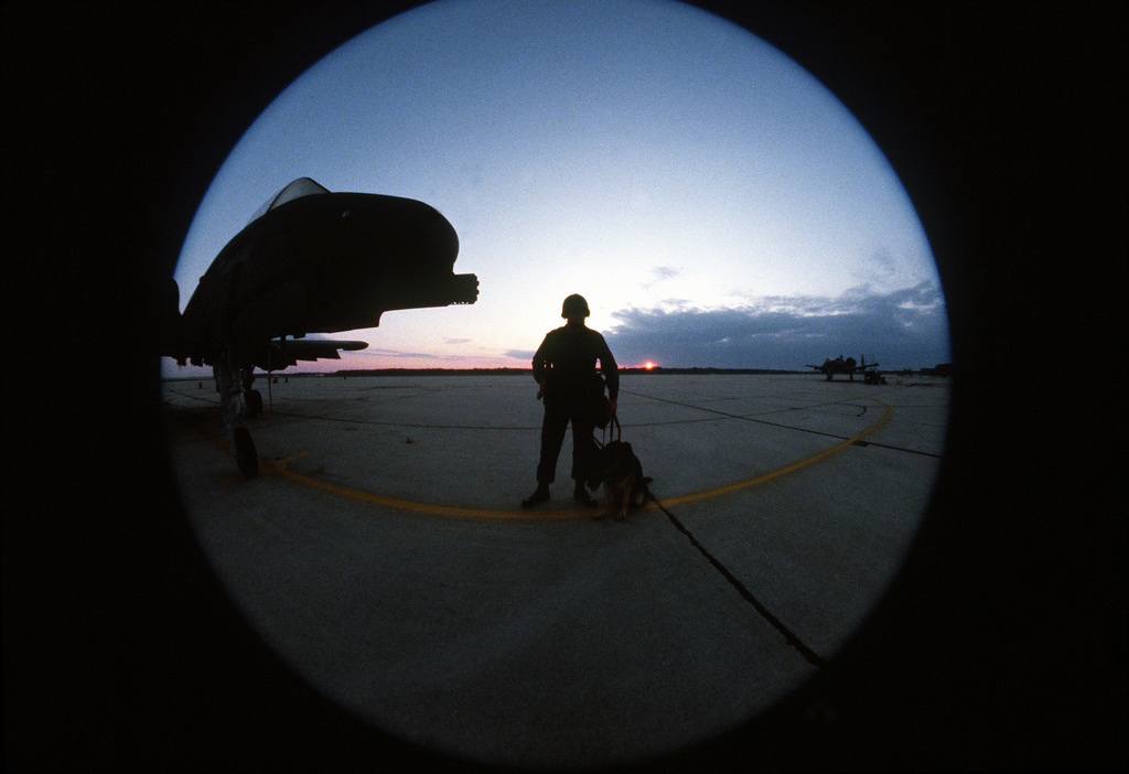 A fish eye view of a security policeman and his dog guarding A-10 Thunderbolt II aircraft during exercise Thunderhog II '80