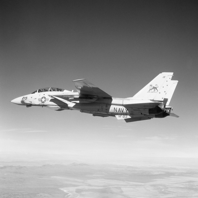 An air-to-air left side view of an F-14 Tomcat aircraft from Fighter Squadron 213 (VF-213) as it flies over the desert near Naval Air Staion, Fallon, Nevada. The aircraft has experimental markings