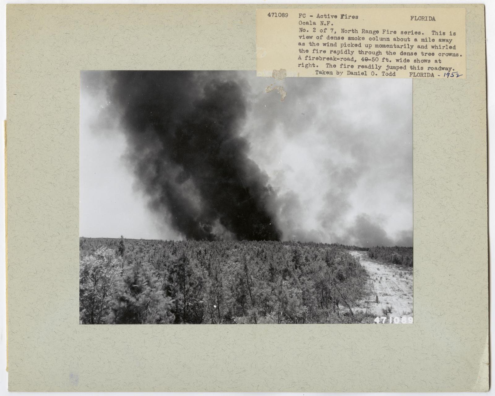 Active Fires - Florida