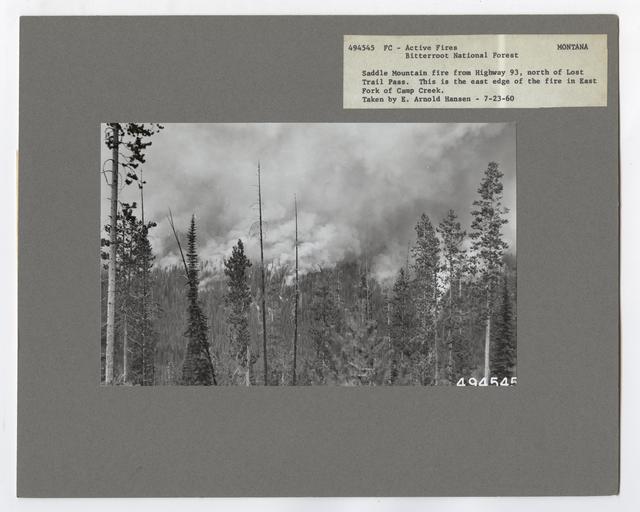 Active Fires - Montana