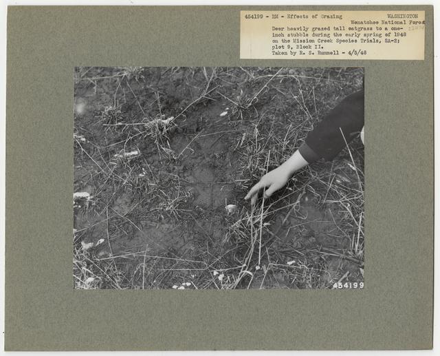 Animal Damage - Washington