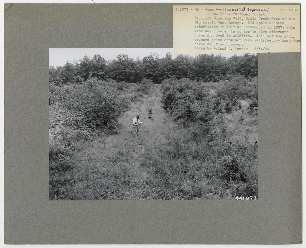 Animal Habitat Improvement - Virginia