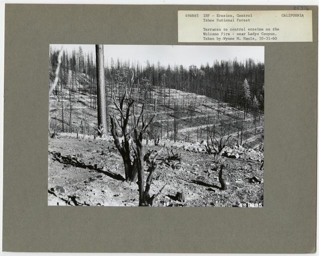 Burned Area Rehabilitation - California