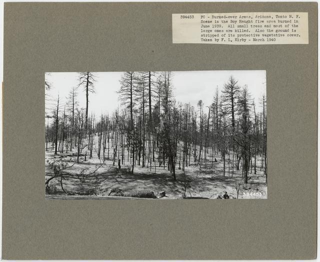 Burned -Over Areas - Arizona