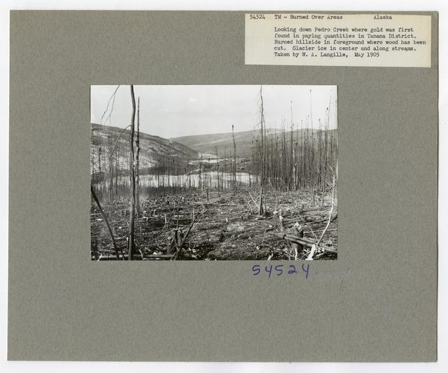Burned -Over Areas - Camera Point - Alaska