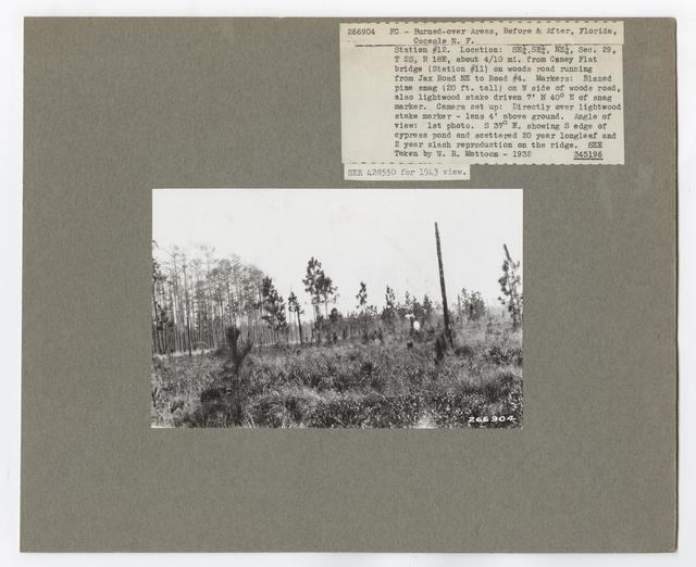 Burned -Over Areas - Camera Point - Florida