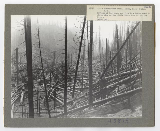 Burned -Over Areas - Camera Point - Idaho