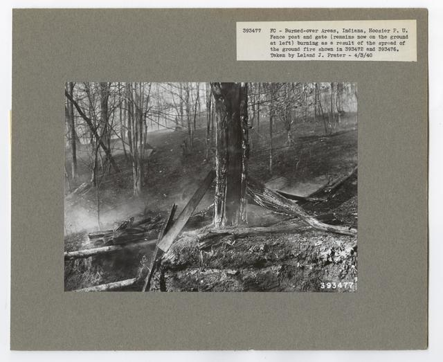 Burned -Over Areas - Camera Point - Indiana