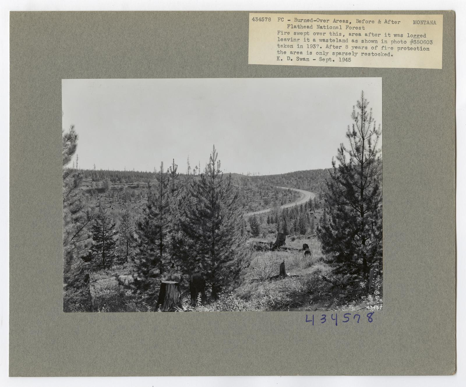 Burned -Over Areas - Camera Point - Montana