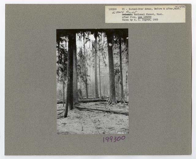 Burned -Over Areas - Camera Point - Washington