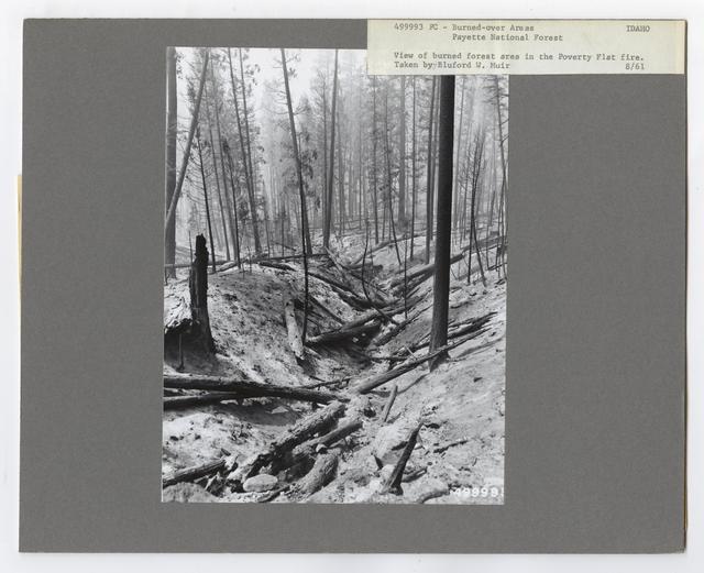 Burned -Over Areas - Idaho