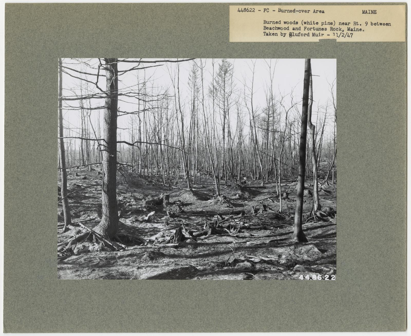 Burned -Over Areas - Maine