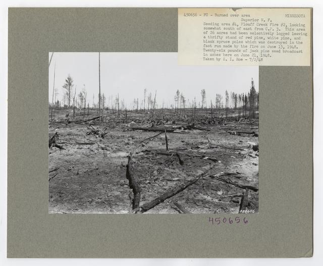 Burned -Over Areas - Minnesota