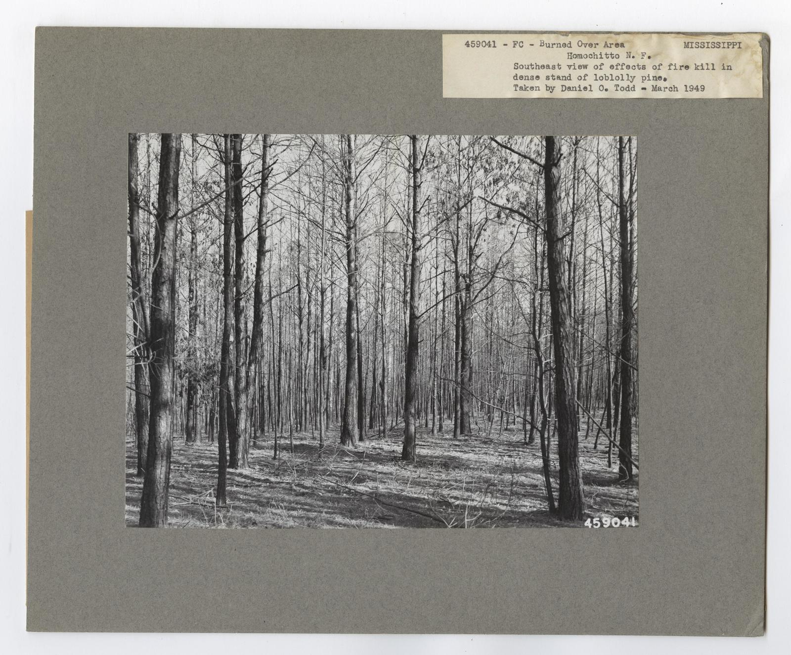 Burned -Over Areas - Mississippi