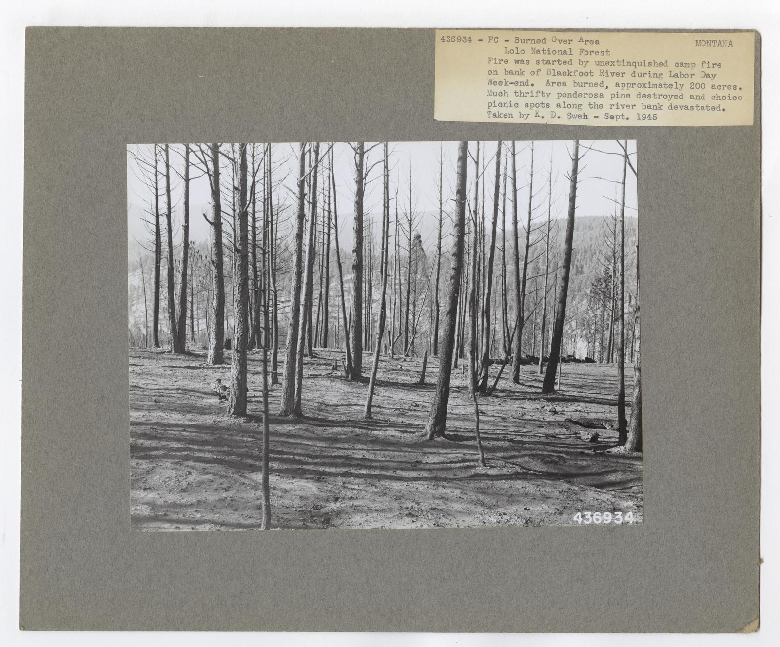 Burned -Over Areas - Montana