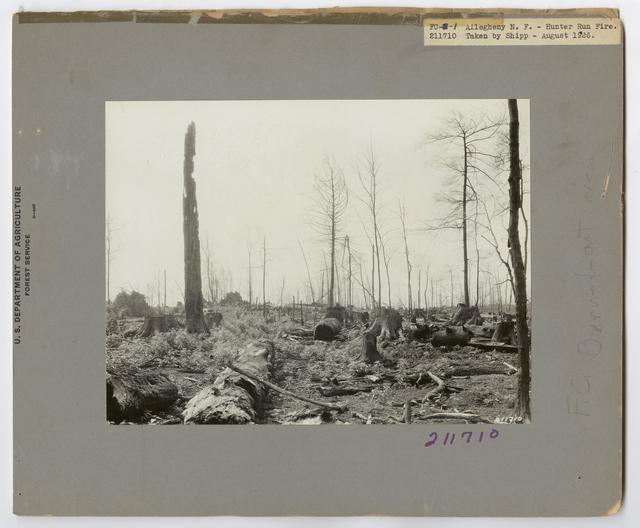 Burned -Over Areas - Pennsylvania