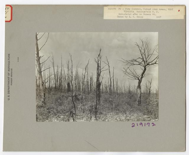 Burned -Over Areas - West Virginia