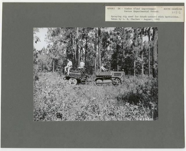 Bush/Cull Tree Removal - South Carolina
