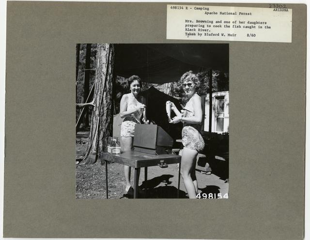 Camping and Picnicking - Arizona
