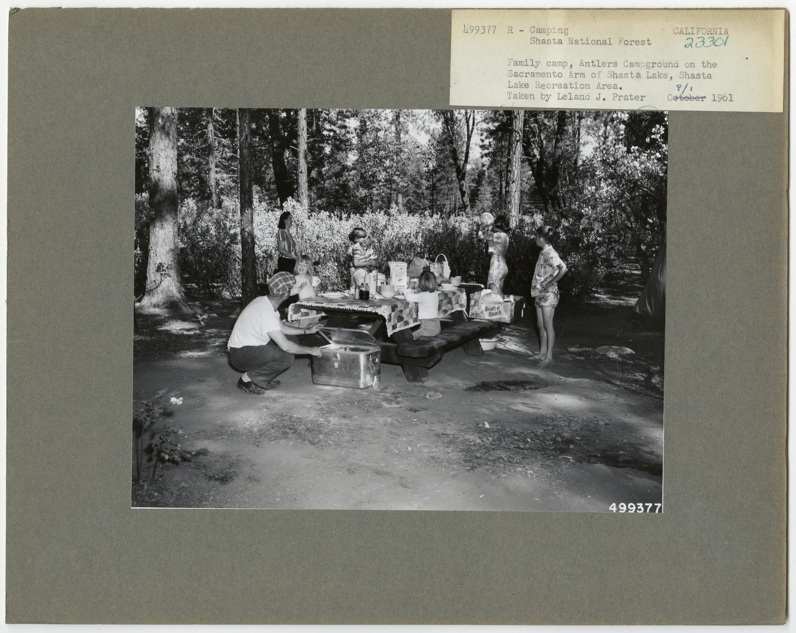 Camping and Picnicking - California