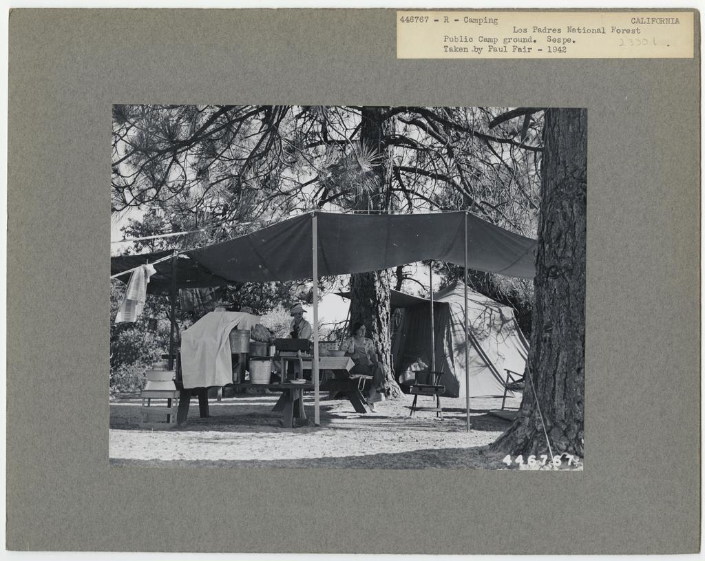 Camping and Picnicking - California
